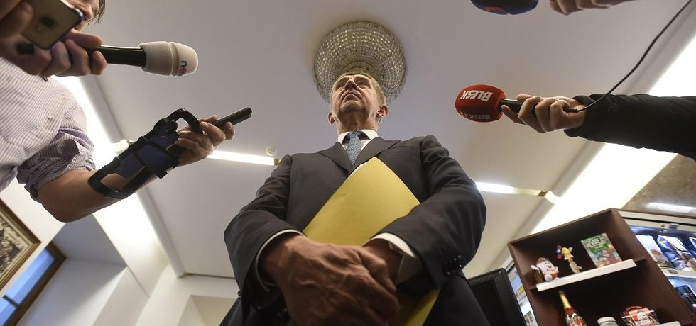 Předseda hnutí ANO a premiér Andrej Babiš