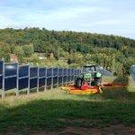 Mezi panely zbývá dost místa k zemědělské produkci.