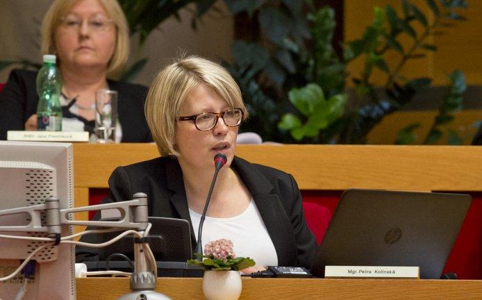 Radní pro územní rozvoj Petra Kolínská (vpředu) na mimořádném jednání zastupitelstva.