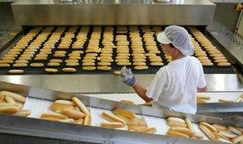 Vzpruha pro Agrofert: pekárny Penam pětinásobně zvýší zisk