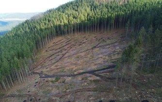 Přírodní rezervace Suchý vrch, ilustrační foto