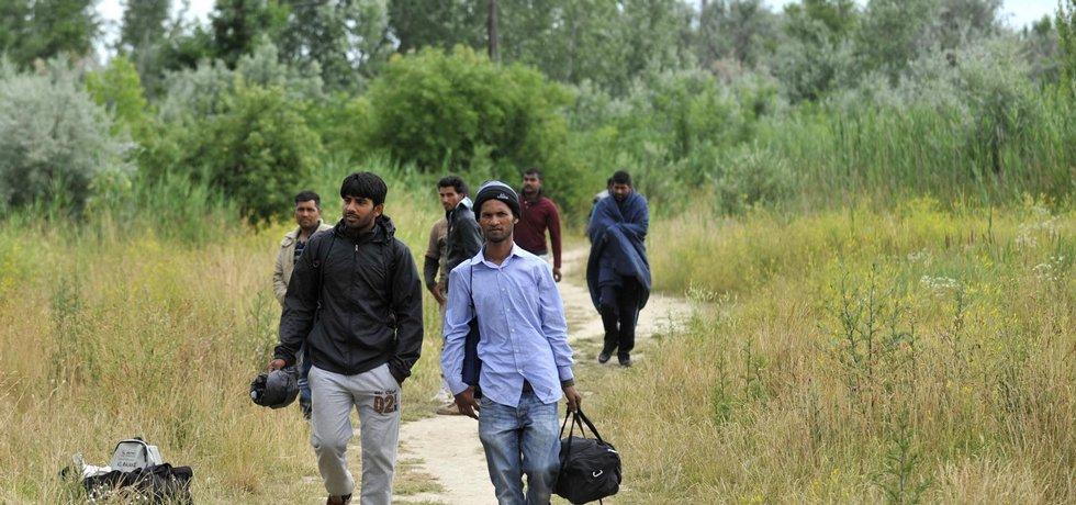 Areál bývalé cihelny v srbské Subotici na snímku z 25. června. Zanedbaný areál s chátrajícími budovami a zarostlý křovím se v poslední době stal přechodným bydlištěm pro desítky uprchlíků. Ti mají z tohoto města blízko hranic s Maďarskem namířeno do EU.