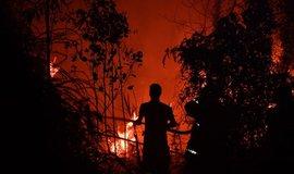 Kvůli vám hoří pralesy. Greenpeace obviňuje potravinářské giganty