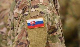 Voják slovenské armády - ilustrační foto