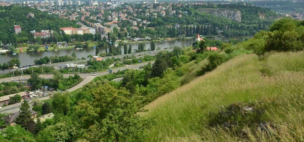 Nová zeleň má vzniknout například na Dívčích hradech, a to na celkem 62 hektarech