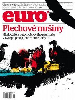 Euro 41/2013