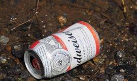 Plechovka piva Budweiser