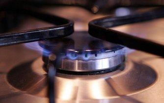 Dodavatelům se podle všeho do případného zdražení plynu chtít nebude.
