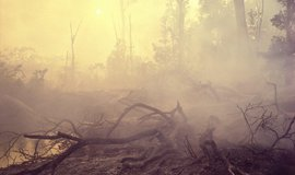 Vypalování pralesa v Brazílii, ilustrační foto