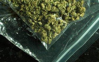 Již zpracovaná a sklizená marihuana