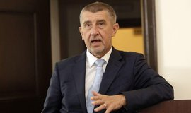 Premiér v demisi a předseda hnutí ANO Andrej Babiš