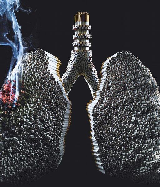 Lidé si mohou vyplnit dotazník, zda jim nehrozí plicní nemoc