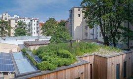 Střechy proti výhni. Zeleň pomáhá snižovat teploty o desítky procent
