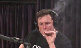 Muskovo vystoupení v internetovém pořadu s komikem Joem Roganem