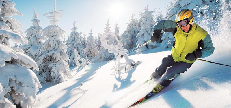 *sport, pohyb, lyžař, zima