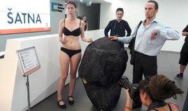 Aktivisté Greenpeace přerušili valnou hromadu ČEZ. Protestovali proti prodeji Počerad