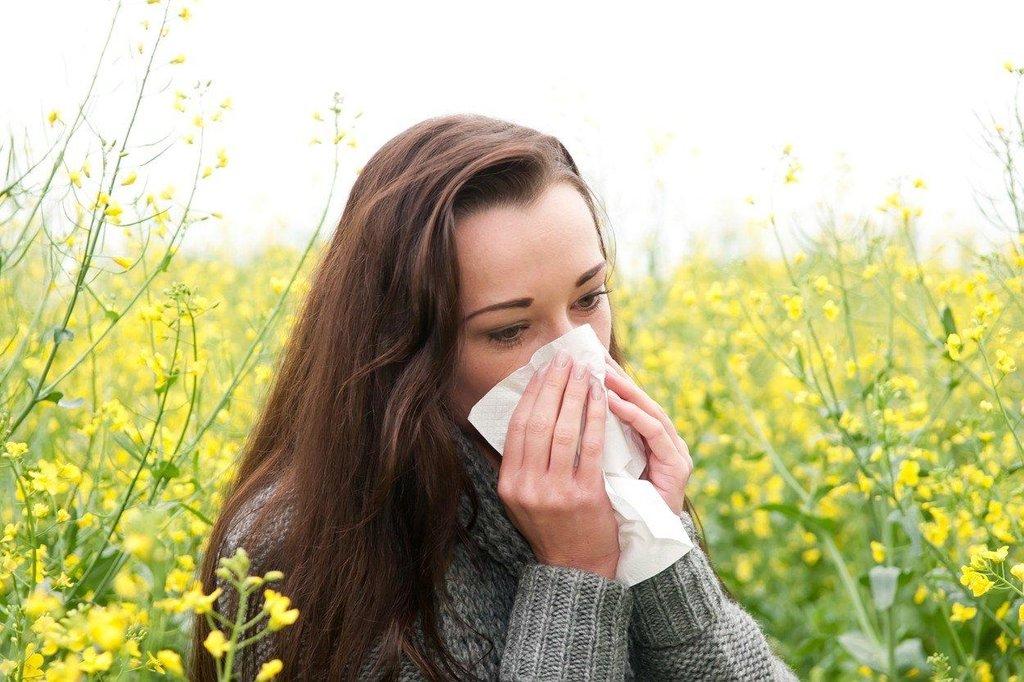 pylová alergie (ilustrační foto)