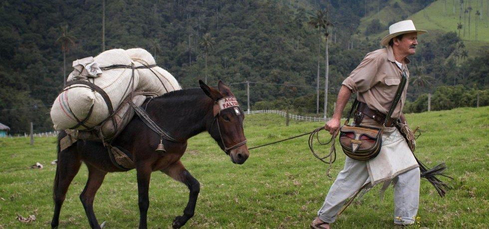 Kávu Juan Valdez zná svět už od padesátých let