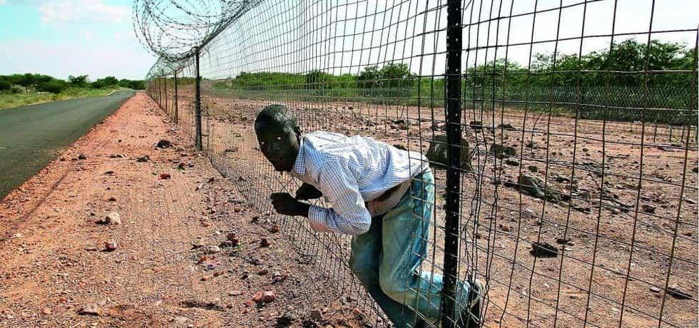 Plot z ostnatého drátu v délce 500 kilometrů, oddělující botswansko-zimbabwskou hranici, má oficiálně bránit přenosu nakažlivých onemocnění dobytka