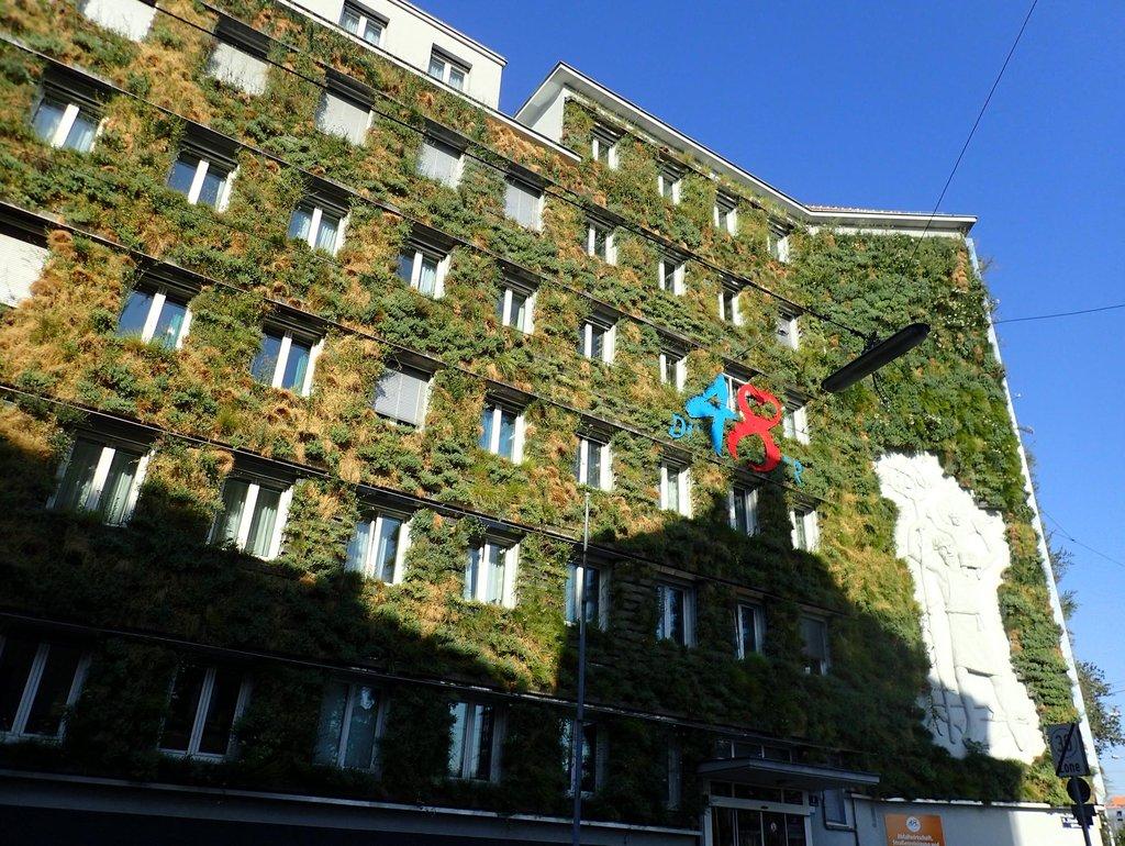 Zelené fasády dokáží vylepšit městské klima