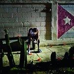 Připojená generace. Raúl Castro kontrolovaně pustil na Kubu mobily a internetové připojení. Díky plíživému uvolňování se daří castrovskému režimu přežívat