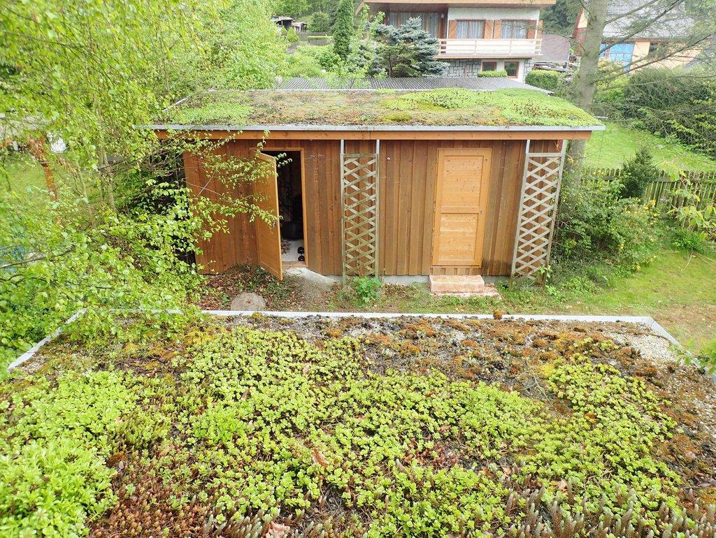 Příklady provedení zelených střech