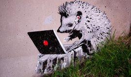 Graffiti na zdi v Estonsku